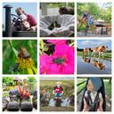 Een selectie van foto's voor ED Zomerfoto 2021.