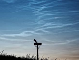 IN BEELD. Voor het eerst dit jaar lichtende nachtwolken aan de Belgische hemel