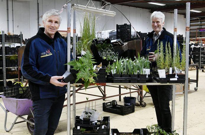 Peter  (links) en Hemmie Heutinck van Kwekerij Heutinck op de nieuwe locatie aan de Needseweg. In de hal worden vaste planten voor internetwinkels gesorteerd, verpakt en verstuurd.