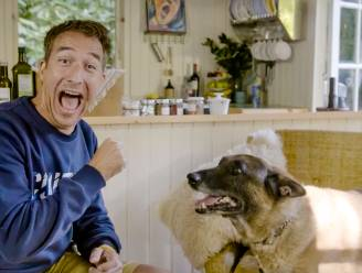 """Andy Peelman maakt gênant verhaal mee met zijn hond: """"Op een bepaald moment voelde ik mijn ene vinger warmer worden dan mijn andere"""""""
