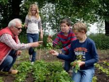 Leerlingen de Viersprong gaan eigen groente kweken en koken
