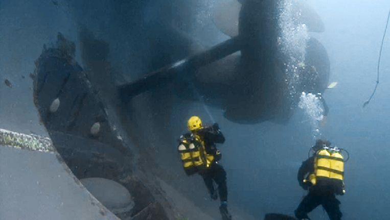 Duikers zwemmen bij het wrak van de Concordia. Beeld ap