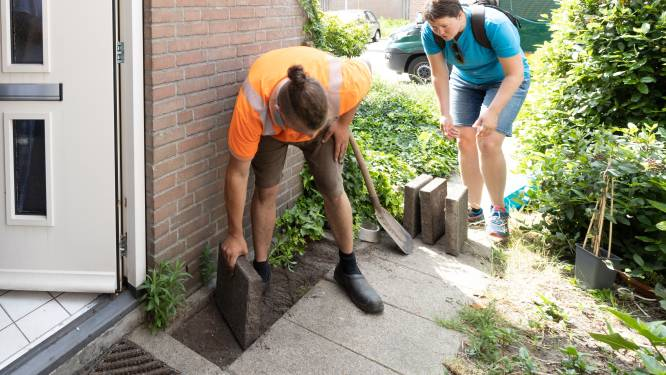 Tuinbranche Nederland wil groenere tuinen: 10 vierkante meter erbij maakt gebied als de Veluwe