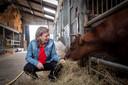 Irma Schouwenaars: 'Het is heel belangrijk om te weten wanneer het genoeg is voor een dier en dat je weet wanneer je moet stoppen'.