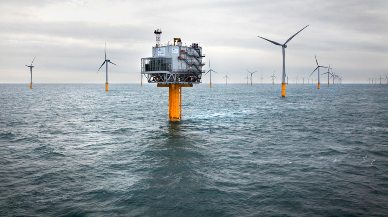 De windparken van de Colruyt Group voor de kust van Oostende kunnen stroom leveren aan 130.000 Belgische gezinnen.  Beeld DATS24