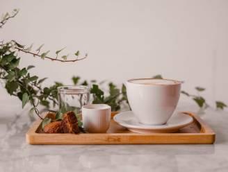 RESTOTIP. Genieten van 'speciality coffee' bij Filter