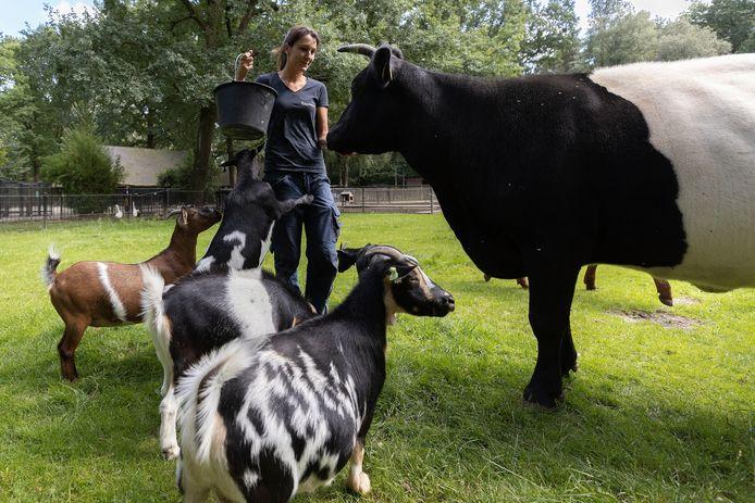 Viola Waardenburg is de nieuwe beheerder van kinderboerderij De Hazewinkel