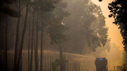 Berlijners aangeraden om ramen en deuren te sluiten wegens bosbranden