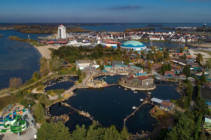 Het Dolfinarium in Harderwijk maakte afgelopen april bekend dat het roer omgaat. Er is per direct een einde gemaakt aan de 'circusachtige shows'. Daarnaast wordt dus afscheid genomen van acht dolfijnen, twee zeeleeuwen en twee walrussen