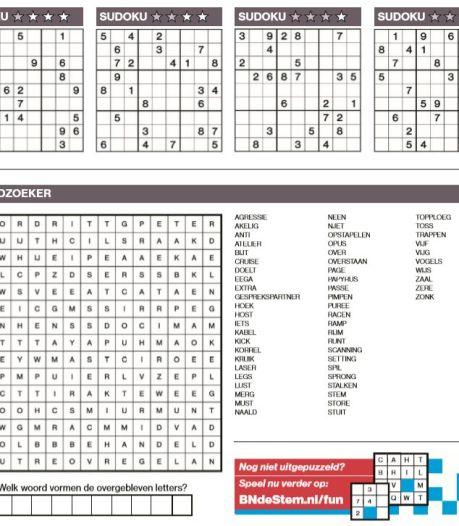 U als lezer leek blij met dagelijks een bladzijde meer met sudoku's, kruiswoordraadsels of cryptogrammen