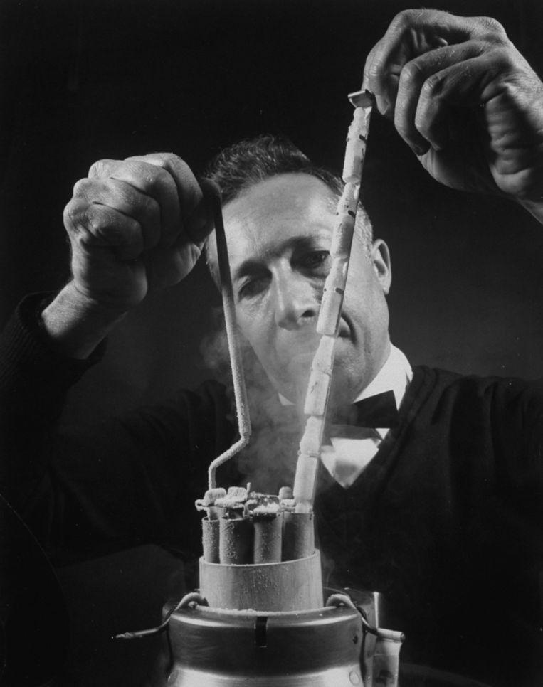 Philip Wachtman, de hoofdpersoon in het boek, is ruim twintig jaar toegewijd zaaddonor. Beeld The LIFE Picture Collection