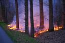 Beginnende bosbrand Molenschot