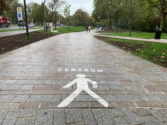 In het Albertpark is voortaan deze wegmarkering aangebracht.
