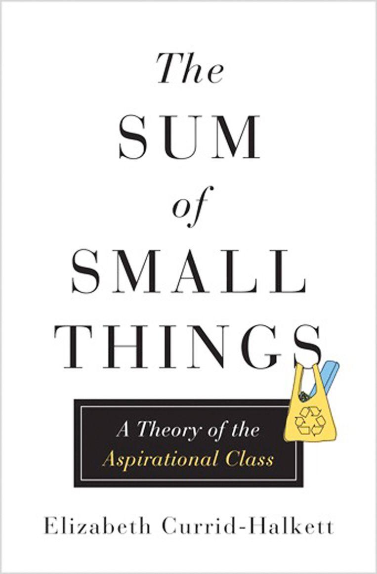 Elizabeth Currid-Halkett, 'The Sum of Small Things – A Theory of the Aspirational Class', Princeton University Press, 272 p., 26 euro. VIERENHALVE STER Beeld rv