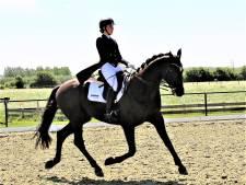 Julie Bouthoorn verrast met haar nieuwe paard