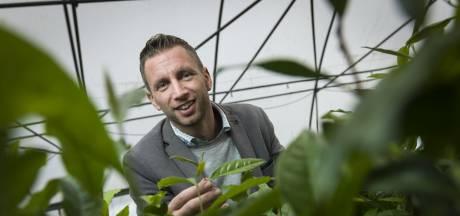 Deze thee-ondernemers lieten investeerders Dragons' Den tegen elkaar opbieden