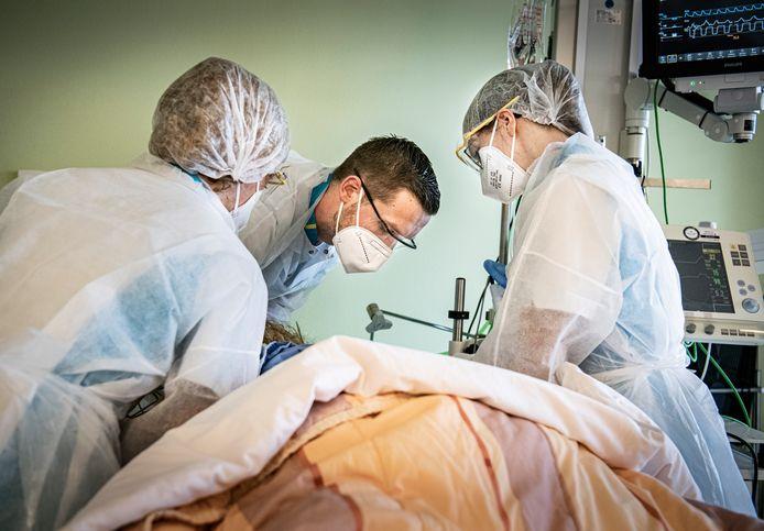 Verpleegkundigen draaien het hoofd van een Covid-patiënt op de intensive care van ziekenhuis Bernhoven in Uden.