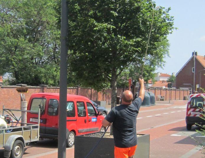 Gemeente Arendonk wapent bomen en struiken tegen droogtestress.
