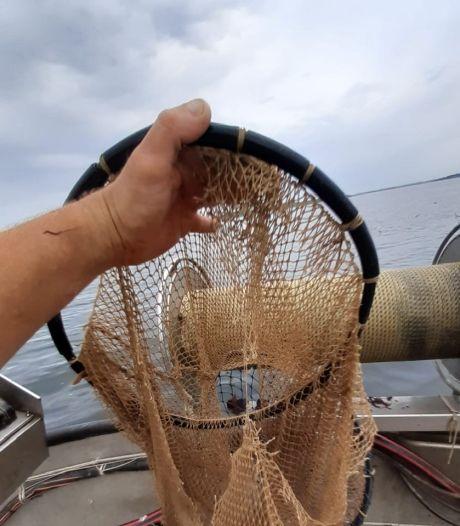 Vernieling van kreeftenfuiken bij Den Osse