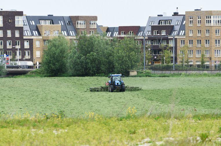 Landbouw en woningbouw dragen allebei bij aan het stikstofprobleem. Beeld Hollandse Hoogte / Peter Hilz