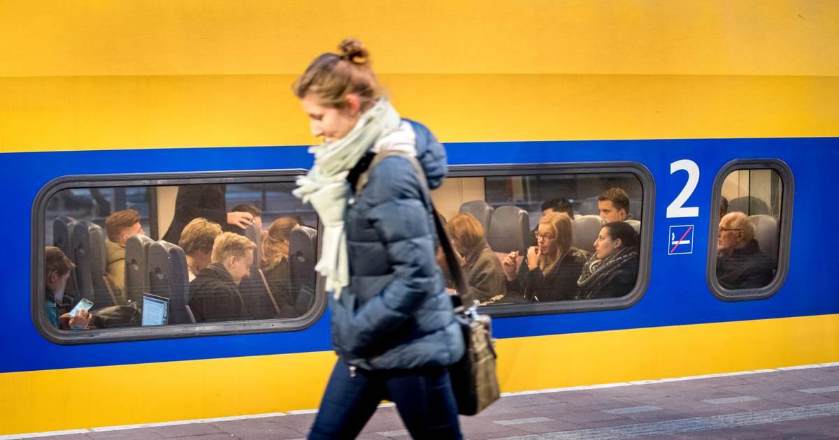 Geen treinen tussen Tilburg en Boxtel na aanrijding met dier.