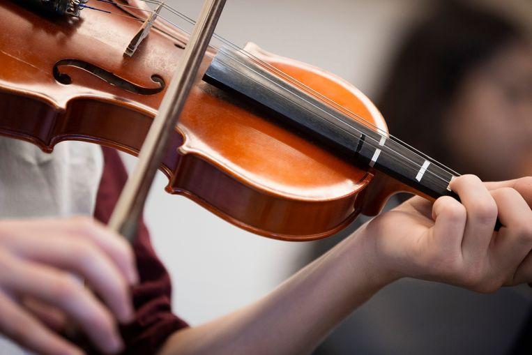 Een violist.