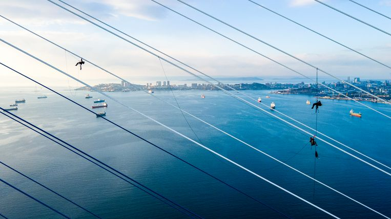 Deze klimmers verwijderen ijs van de kabels van de Russky-brug over de Oostelijke Bosporus bij de Russische stad Vladivostok. De brug was tijdelijk gesloten na een ijsstorm die niet alleen de brug maar ook bomen, auto's, wegen en stroomkabels met een dikke laag ijs bedekte. Beeld AP