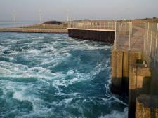 Grevelingen is ziek: 'Snel vers water nodig'