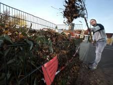 Doesburg neemt met pijn in het hart afscheid van bladkorven: 'Zaten ook banken in'