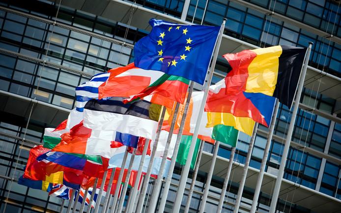 De vlaggen van de lidstaten voor het Europees Parlement tonen de veelkleurigheid van de Europese Unie.