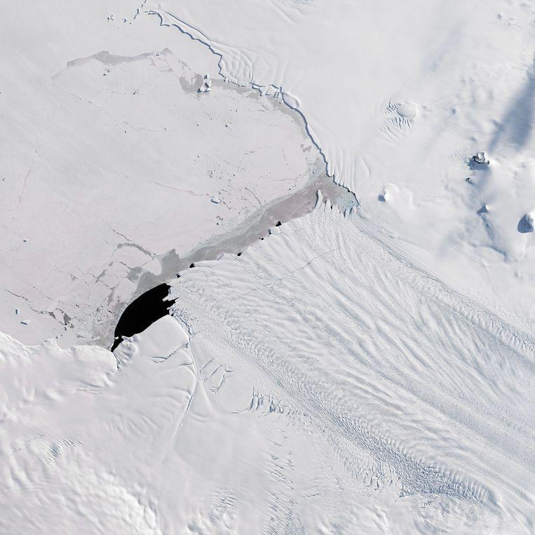 De Pine Island gletsjer Beeld Hollandse Hoogte / Eyevine