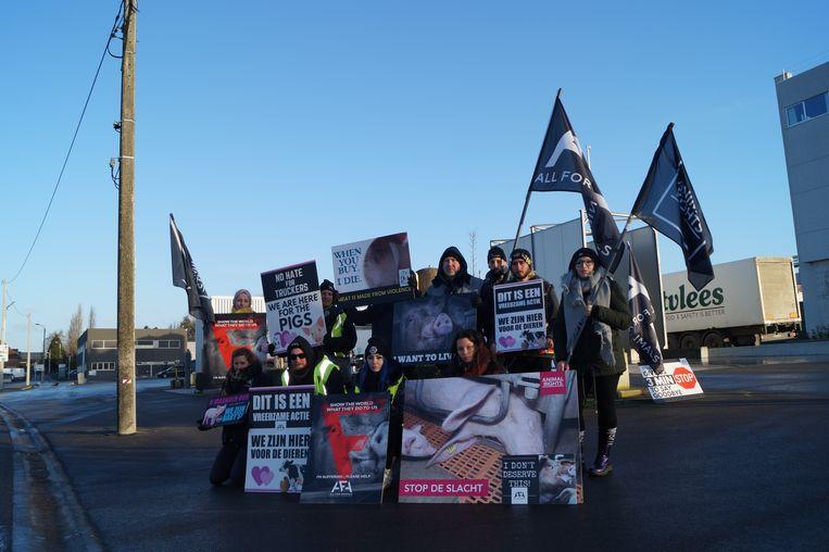 Dierenrechtenactivisten van Animal Rights en All For Animals hielden een vreedzame actie aan de poorten van Westvlees.