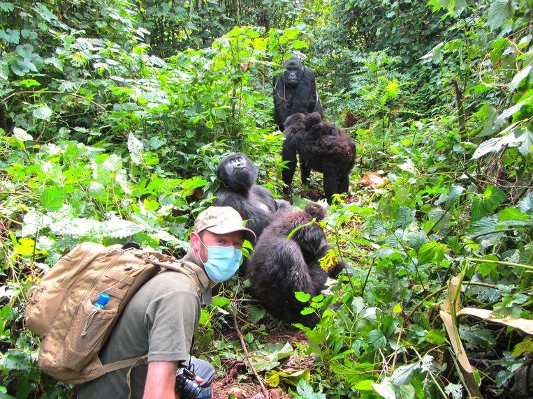 Anthony Caere bezoekt de zeer zeldzame berggorilla's die het Virunga-park zo speciaal maken. Beeld RV Anthony Caere