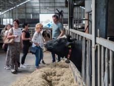 1e Leegvelderdag in Deurne: 'Dit zouden meer boeren moeten doen'