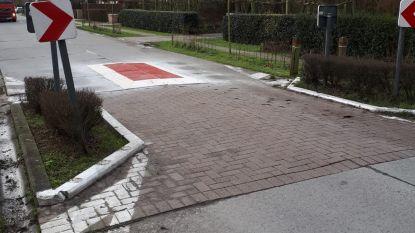 Damme start proefproject met drempels tussen wegversmallingen