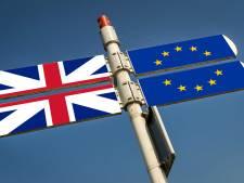 Nederland praat met 250 bedrijven over brexitverhuizing: 'Ook grote jongens'