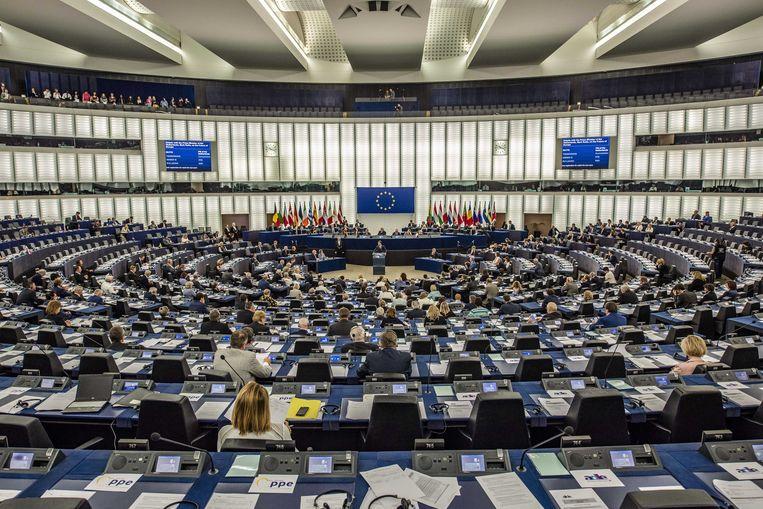 Het Europees Parlement in Straatsburg. Beeld ANP