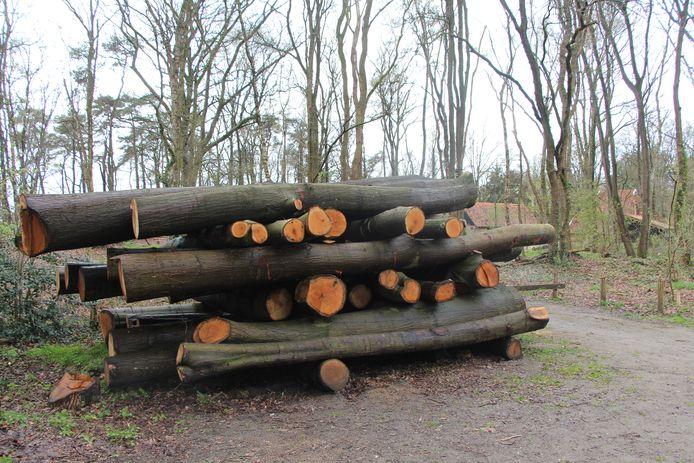 De stapel stammen van gevelde bomen op het Sprakelberg-terrein bij de blokhut van de Cycloongroep/Scouting Borculo.