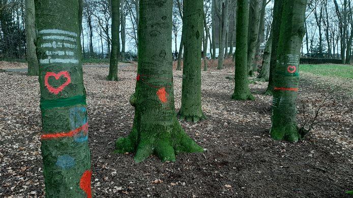 Met hartje getooide bomen in Klarenbeek eerder deze maand. De kap is inmiddels in volle gang.