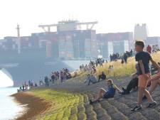 's Werelds grootste containerschip op de Westerschelde: overal klikken de camera's