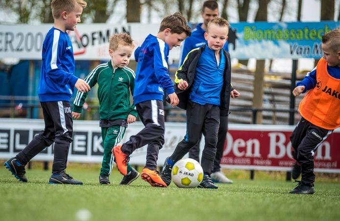 Voetbalclub SEH in Heerde ziet een flinke stijging bij de kleinste voetballertjes. Elke week melden zich nieuwe kinderen.