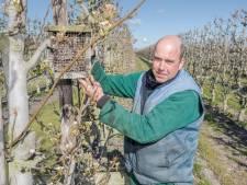 Jan Peter gaat weer in de appels: biologisch, want dat is logisch