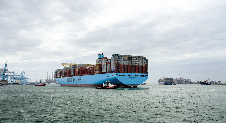 Containerschepen arriveren in de haven van Rotterdam.  Beeld Freek van Arkel/Beeldunie