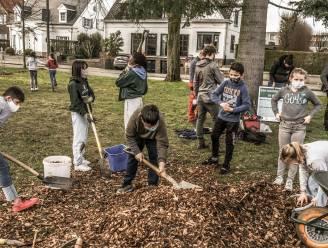 Kinderen planten eerste 'tiny forest' van Kortrijk aan, wonderwoudje groeit in wijk Pius X