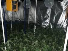 Wietplantage ontdekt in Spijkerkwartier na anonieme tip