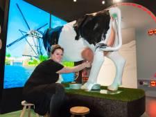 Paneel maakt toerist wegwijs met koeien en kaas in het Groene Hart