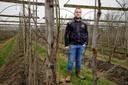 Fruitteler Maarten van Hoof tussen zijn fruitplanten.