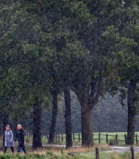 Aanleg riool Zetten-Dodewaard lijkt volledig vast te lopen door geschil over aantal te kappen bomen