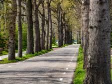 'Nieuwe buren' mogen definitief geen minicamping beginnen in Olst