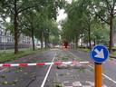 Lage Witsiebaan, Tilburg. Afgezet voor snoeiwerkzaamheden.